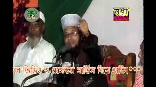 Bangla waz Maulana Norul Haque Jahadi Naimi Saheb, Mobile-01728056812