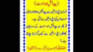 Maulana Tariq Jamil New Bayan Fahashi Aur Iryani