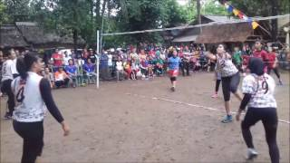 Final Open Turnament volly ball putri Genvick Cup 2016