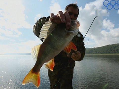 рыбалка окунь и сазан