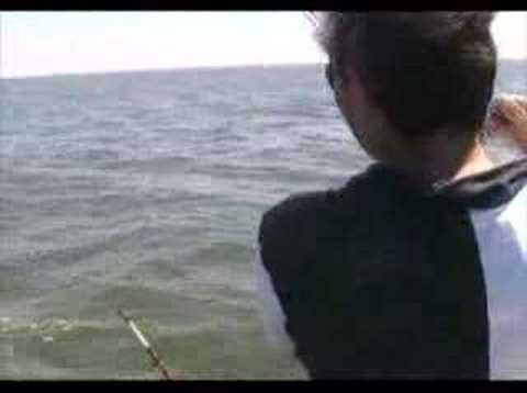 Pesca de Corvina en Costa de Oro