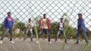 Sarainodu video songs