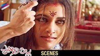 Suresh Gopi Love with Mamta Mohandas | Pokiri Pilla Movie | Love Scene Of The Day