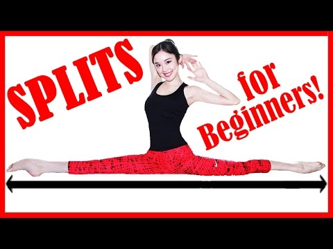 【How To Do the Splits Stretch 】For Beginners 開脚ストレッチチャレンジ!