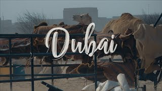 Insta360 - Dubai Adventure