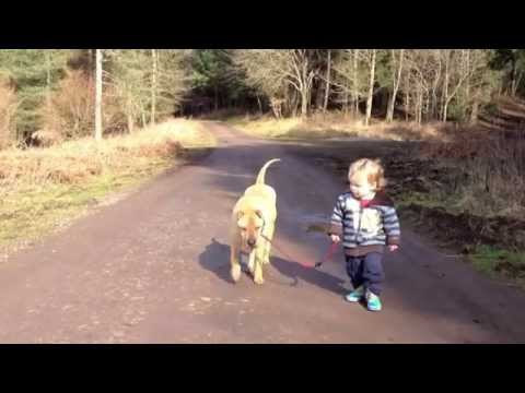Best Friends - a kid, a dog and a puddle