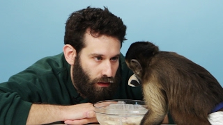 Stoners Get Surprised With A Monkey & Eat Banana Splits