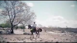 Clip Junior Vianna Cavalo Ostentação
