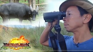 Matanglawin: Kuya Kim meets Kali