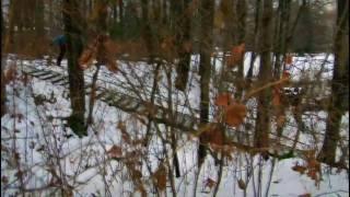 AWOL One - Rhythm (HD Snowboarding)