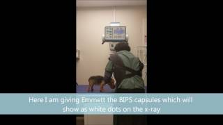 Veterinary Technology Radiology- Contrast Study