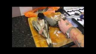 How To Pluck,Gut And Roast A Pigeon.