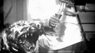 arano diner songs HASNABADER HASINA AMI RUNA LAILA HD ( (neha hayt) like this songs)
