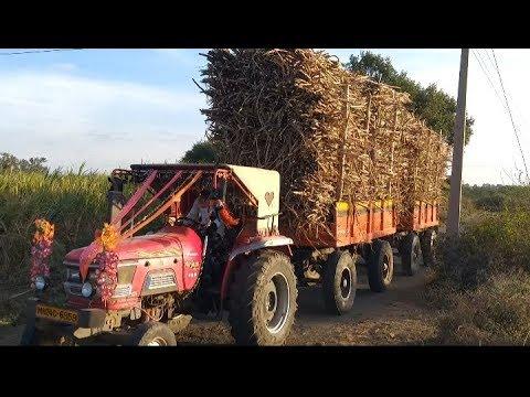 Xxx Mp4 THE Power Of Mahindra Arjun 555DI Sugar Cane Tractor ऊसाचे ट्रॅक्टर 3gp Sex