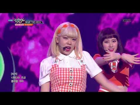 Xxx Mp4 뮤직뱅크 Music Bank What The Heck 샤샤 SHA SHA 20180824 3gp Sex