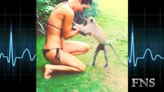 Naughty Animal Want To Undress Girl