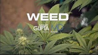 Full CNN Documentary Weed Parts 1-3 (2013-2015)