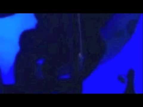 Xxx Mp4 Video Porno De Gloria Trevi Y Armando En Alberca De Acapulco 96 3gp Sex
