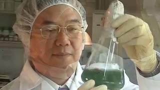 فيديو تعريفي عن شركة DXN الماليزية العالمية
