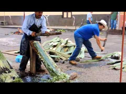 Tacátzcuaro elaboración de Reatas de Lazar