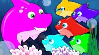 Five Little Sharks   Nursery Rhymes   Kids Songs   Baby Rhymes   Shark Song