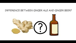 What is the difference between ginger ale and ginger beer?