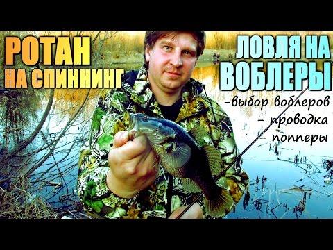 новые видео о рыбалке на воблеры