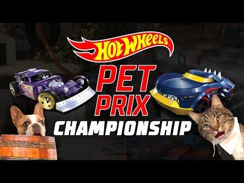Xxx Mp4 Hot Wheels Freestyle Championship Hot Wheels Pet Prix Episode 6 3gp Sex