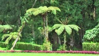 Kebun Raya Eka Karya also known as Bali Botanic Garden for botanical research and recreation