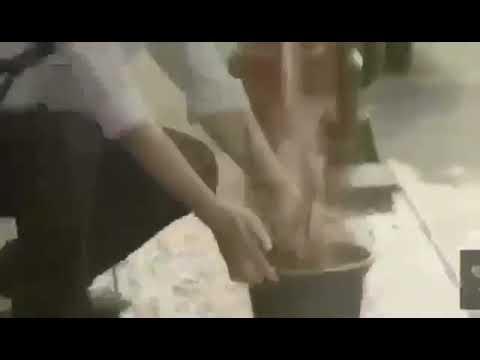 Xxx Mp4 مشاركة الطالبة عائشة سيد التركماني بفيديو عن الرفق بإشراف المرشدة الطلابية أ ندى المالكي 3gp Sex