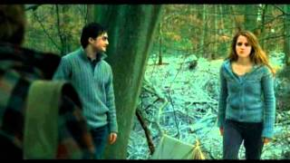 "Funny Weasley/Granger Scene #73 | ""You..Complete..Arse Ronald Weasley!"""