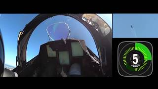 G Force on the Gripen