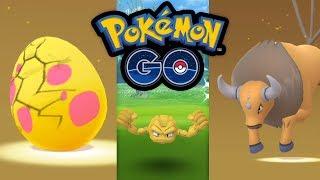 Tauros aus dem Ei! Regionale Pokémon im Kanto-Event | Pokémon GO Deutsch #722