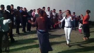 رقص تركي شعبي على اغنية عربية