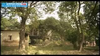 Bangla Natok - Bhalobashi Tai