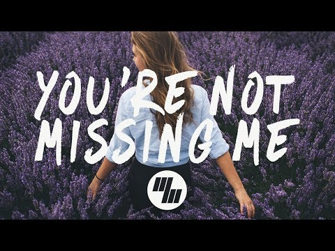 Chelsea Cutler - You're Not Missing Me (Lyrics  Lyric Video)