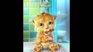 Talking Friends Viedo-Ginger die sprechende Katze