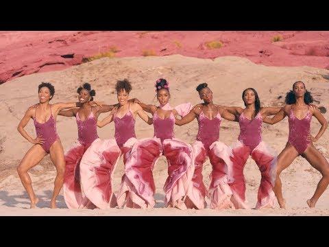 Janelle Monáe - PYNK [Official Video]