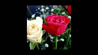 Mon pajore shudhu tumi Acho Bangla Love song