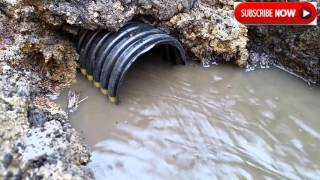 Farm Drainage tile ~ How Fast tile actually starts working! Free Estimate (712) 358-0818