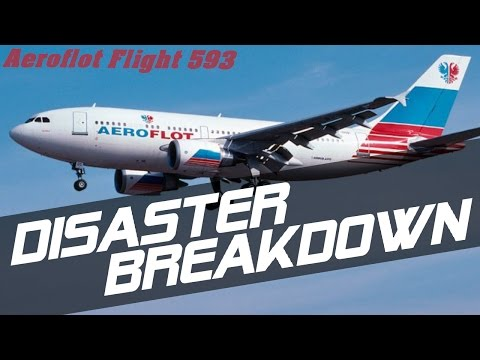 Aeroflot Flight 593 DISASTER BREAKDOWN
