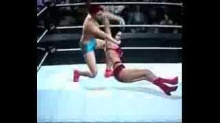 Misty vs  Nikka Bella - Championship match
