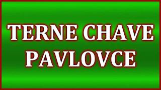 Terne Čave Pavlovce 2011