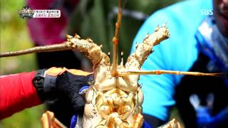 The law of the Jungle(정글의법칙) Ep.74 #33(3)