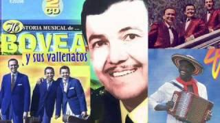 Bovea y sus Vallenatos - Mi cafetal