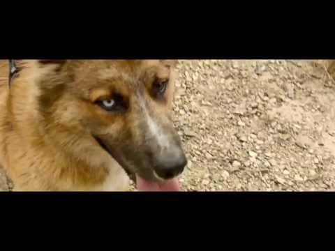 Xxx Mp4 Sacha Felix Thirst X Official Video 3gp Sex