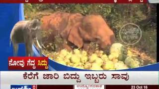 Janasri News | Novu Gedda Sidda - Save Elephant Sidda story - part 2