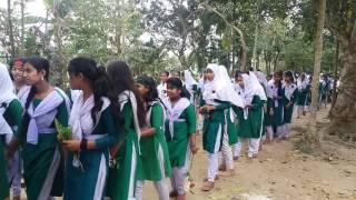 Tangail Dhanbari Ambaria High school
