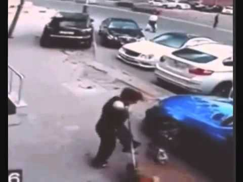 7 evil cats on street   cat attacks woman in snow