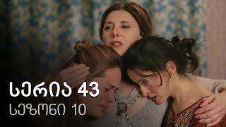ჩემი ცოლის დაქალები - სერია 43 (სეზონი10)